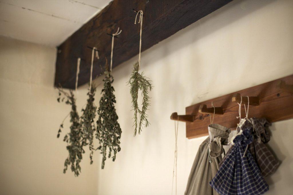 wicca herbs