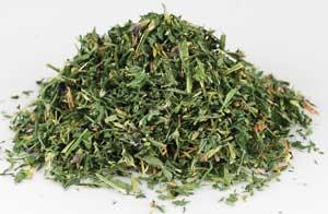 alfalfa herb herbal correspondences
