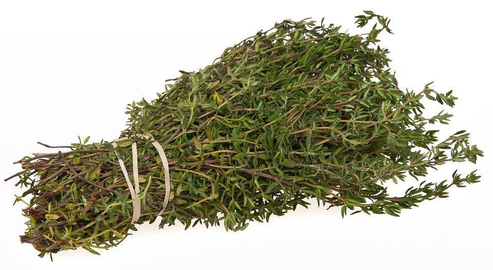 thyme herbal correspondences
